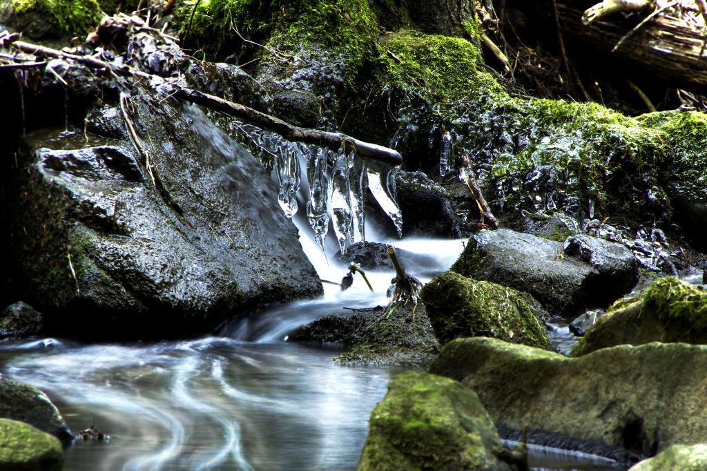 Natur Im WällerLand: Entdecken – Erkunden – Genießen