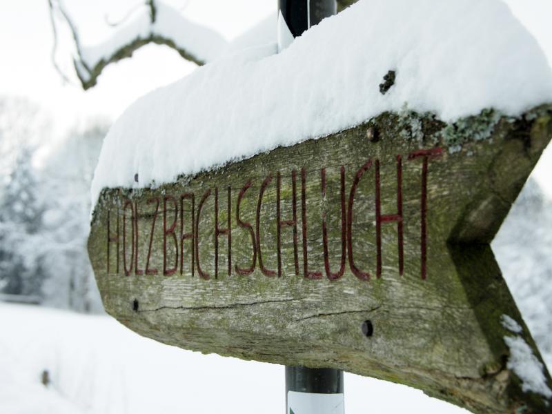 IMG_5059_Holzbachschlucht